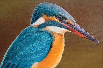 Eisvogel Detail von Russell Hinckley