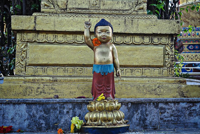 Tempel Chitwan van Dennis Timmer