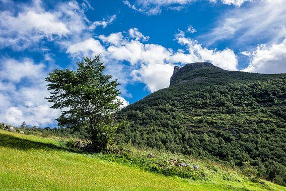 Landscape in Norway van Rico Ködder