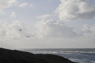Zee, duinen en deltavliegers van Pauline Bergsma