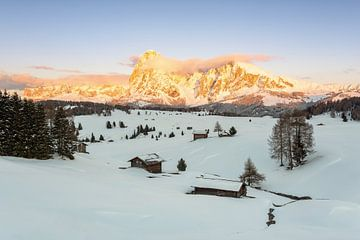 Alpenglow on the Alpe di Siusi sur Michael Valjak