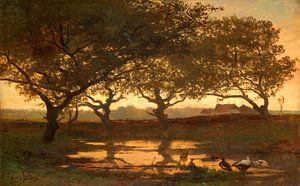 Bosvijver bij zonsondergang, Gerard Bilders