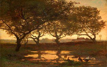 Waldteich bei Sonnenuntergang, Gerard Bilders