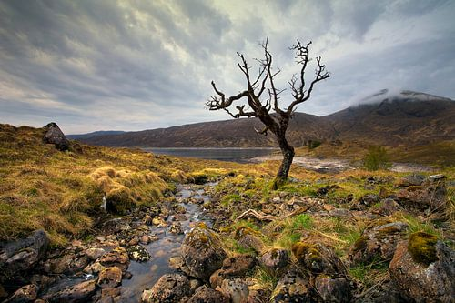 Kinloch Hourn, Schottland