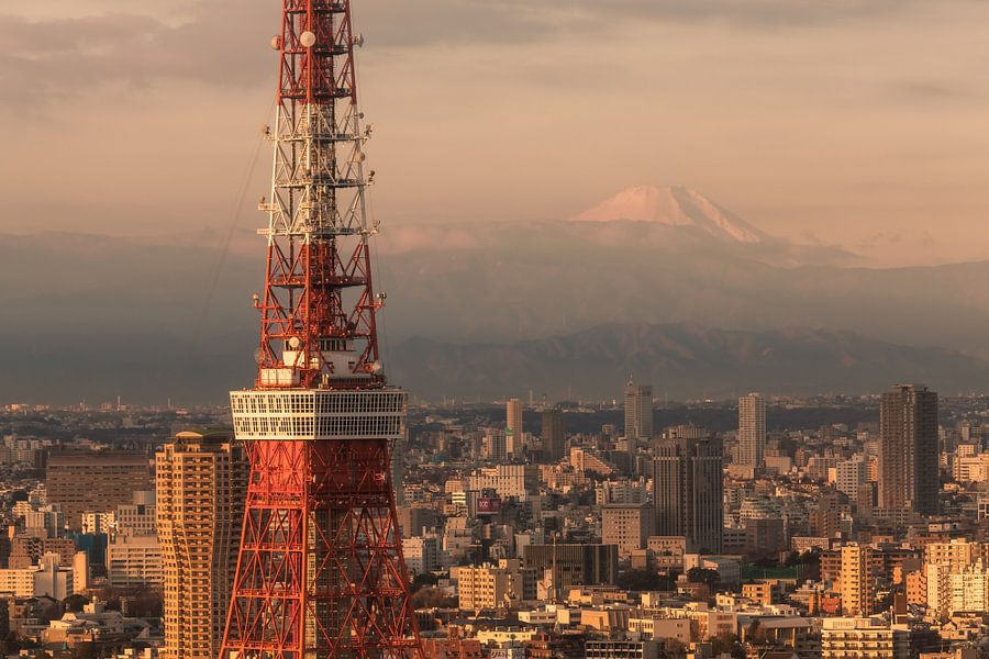 TOKYO 28