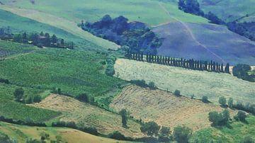 Italië Toscane van Dirk van der Ven