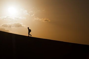 The Only Way Is Up, All Downhill From here van Sietse van der Meer