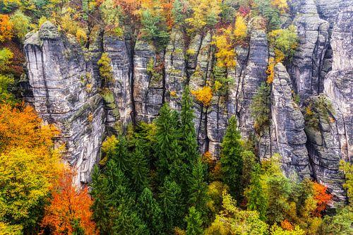 herbstliches Elbsandsteingebirge