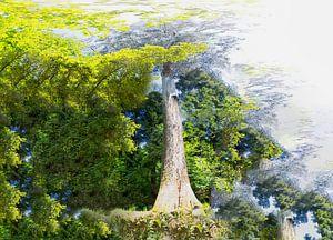 Tree von