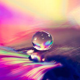 Waterdruppel met vele kleuren van Bert Nijholt