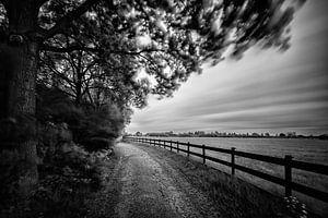 Landweggetje met hek (Zwart-wit) van