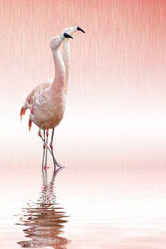 Rosa Flamingo van Martina Fornal