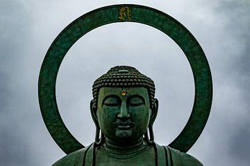De grote Boeddha van Takaoka van