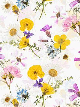 Mittsommer Gepresste Blüten Sträuße von Uta Naumann