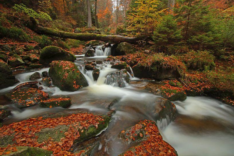 Wasserfall im Harz von Heiko Lehmann