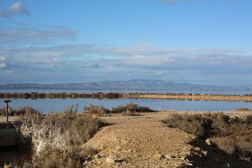 landscape  von marijke servaes