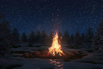 brandend kampvuur omgeven door dennenbomen en sneeuw 's nachts van Besa Art