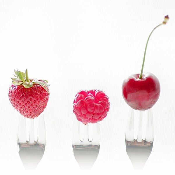 3 fruits 3 forks van Tanja Riedel