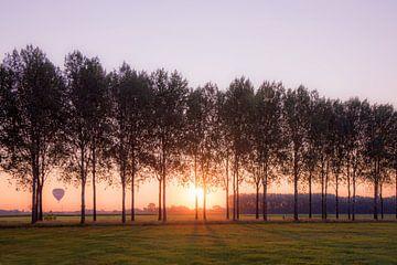 Sonnenaufgang Elst von Nicky Kapel