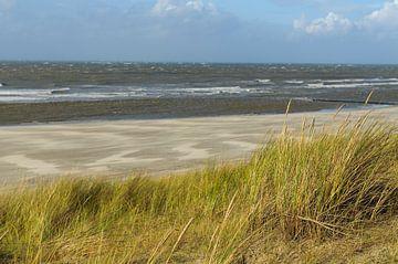 Plage vide à l'île de Vlieland Wadden sur