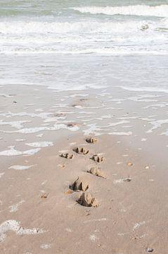 hondenpootafdrukken  in het zand van Annelies Cranendonk