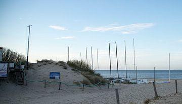 Strand van Wendy Bierings