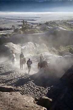 Reiten am Vulkan Bromo von Kees van Dun