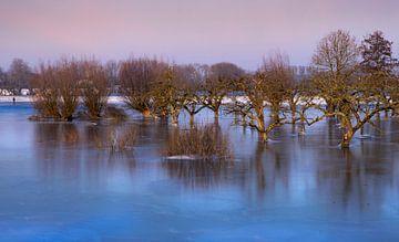 bevroren appelgaard van Patrick Strik