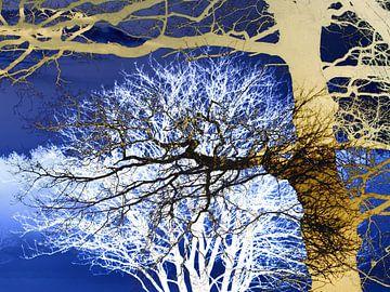 grafische collage van bomen van Herman Kremer