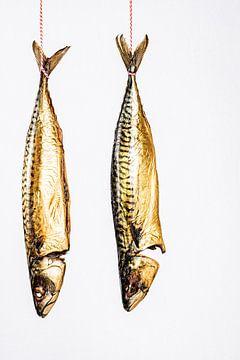twee makrelen hangen aan een stuk rood-wit keukentouw tegen een witte achtergrond. van MICHEL WETTSTEIN