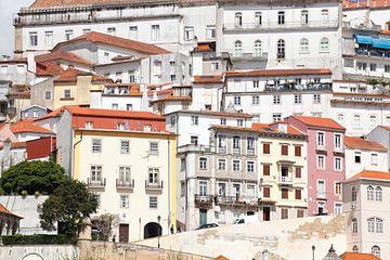 Altstadt , Coimbra, Beira Litoral, Regio Centro, Portugal