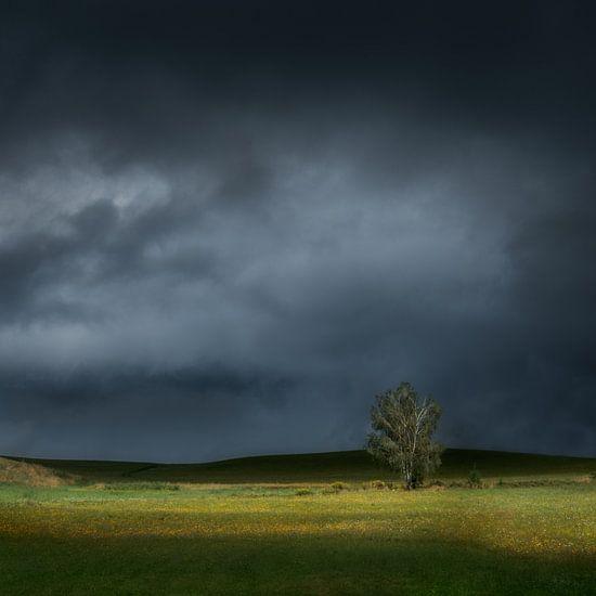 Against the dark van Ruud Peters
