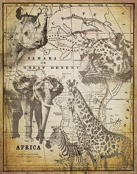 Afrika van Andrea Haase