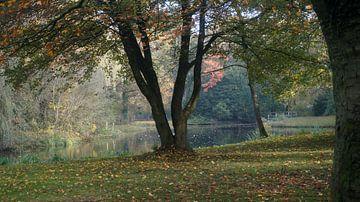 Rengerspark van Dirk de Bood