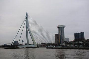 Erasmusbrug in Rotterdam van Eugenlens