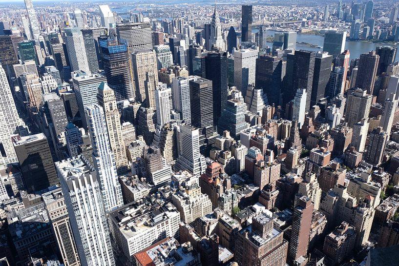 Skyline Manhattan vanaf Empire State Building van Ingrid Meuleman
