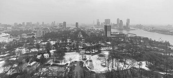 Winter in Het Euromastpark in Rotterdam (formaat 2/1)