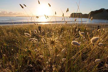 Duinlandschap bij zonsopkomst van Michaelangelo Pix