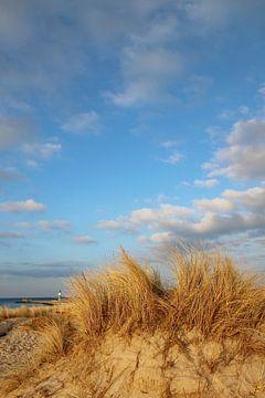 Dunes van