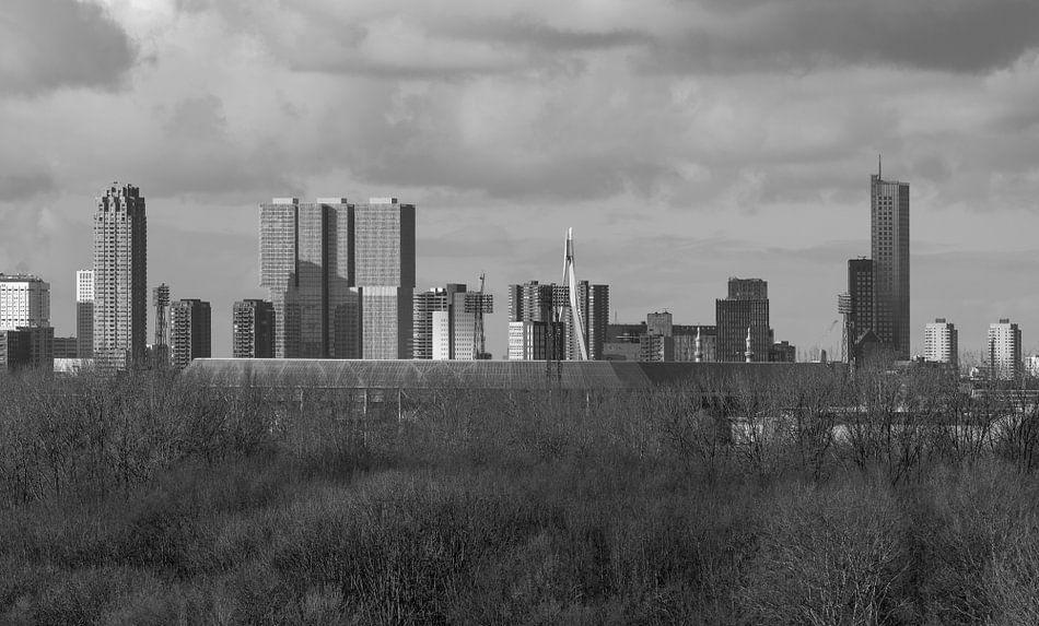 Het Feyenoord Stadion De Kuip in Rotterdam met het Park de Twee Heuvels op de voorgrond van MS Fotografie
