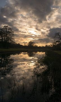 Landschap van de Amsterdamse Waterleidingduinen. von Robert Moeliker