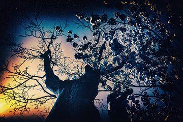 Nuit surréaliste et étoilée - Dystopia Utopia sur Jakob Baranowski - Off World Jack