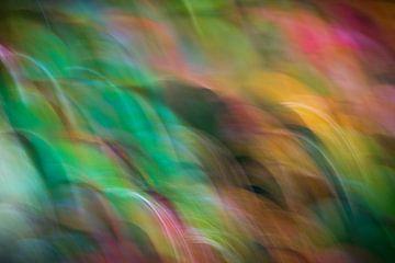 Een kleurenspel van verbeelding van AnyTiff (Tiffany Peters)