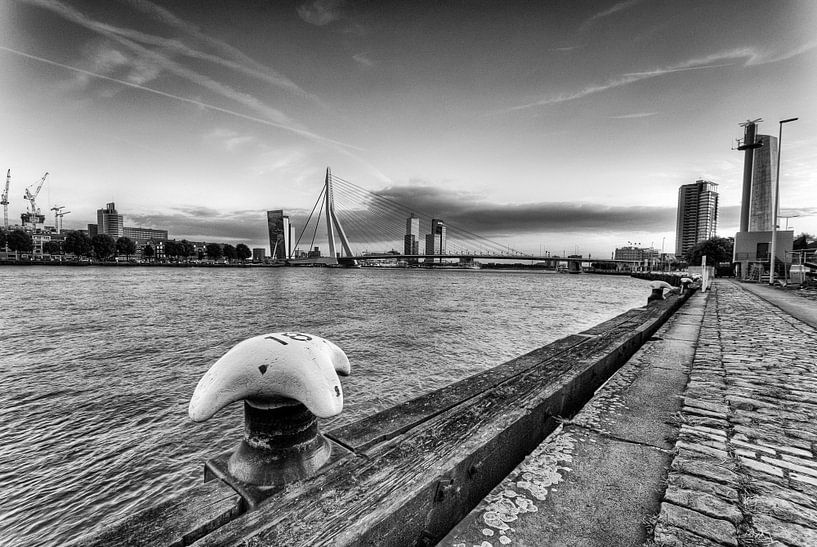 Zicht op Rotterdam van Esther Seijmonsbergen