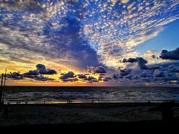 Strand von Floris Nobel