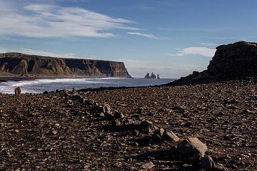 IJsland van Eric van Nieuwland