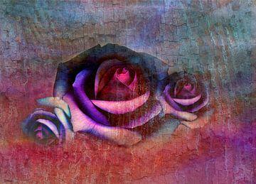 drie rozen van Claudia Gründler