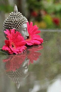 Boeddha met gerbera's van