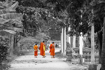 Mönche gehen im Tempel spazieren
