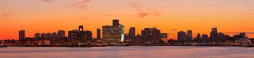 Oranje boven Rotterdam
